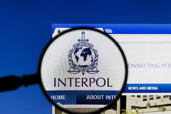 Magnifier on web page of Interpol. Stock Photos