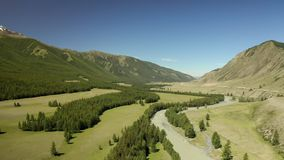 Magnifique paysage de printemps avec montagnes, forêt et rivière Vue aérienne Un drone au-dessus d'une belle forêt de montagne clips vidéos