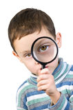 Magnifying Royalty Free Stock Photo