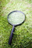 Magnifying glass. On grass background Royalty Free Stock Photo