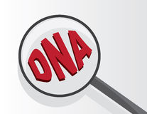 Magnifying Glass DNA. Magnifying glass viewing DNA text vector illustration