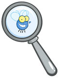 Magnifying glass with fly. Magnifying glass zooming in on a fly cartoon character stock illustration