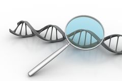 Magnifying glass focussing on a section of a DNA strand. Magnifying glass focusing on a section of a DNA strand in white background vector illustration
