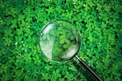 Magnifying glass on green grass background, exploration ecology concept,  illustration Royalty Free Stock Images