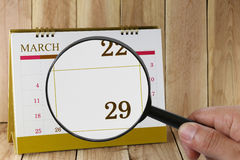 Magnifying glass in hand on calendar you can look Twenty-nine da Royalty Free Stock Image
