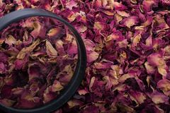 Magnifying glass over  dried  rose petals Stock Image