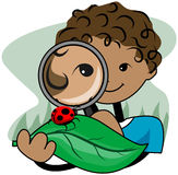 Magnifying Glass Kid Stock Images