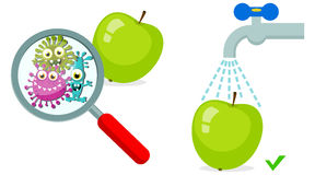 Magnifying Glass look through Germ, Bacteria, Virus, Microbe, Pathogen Characters on dirty green apple. Stock Photo
