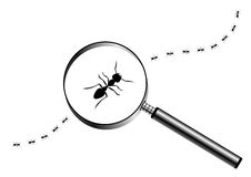 Magnifying glass with marching ants Stock Photography