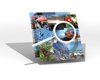 Magnifying glass on multiple photos Stock Images