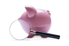 Magnifying glass next to a pink piggy bank Stock Photography