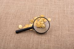 Magnifying glass and plenty of fake gold coins royalty free stock photography