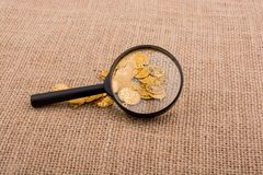 Magnifying glass and plenty of fake gold coins royalty free stock image