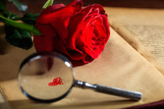 Magnifying glass and red rose on a book Royalty Free Stock Photo
