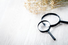 Magnifying glass, Search and discover symbol. Magnifying glass with flower on wood table Stock Photos