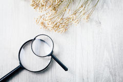 Magnifying glass, Search and discover symbol. Magnifying glass with flower on wooden background Royalty Free Stock Photos