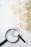 Magnifying glass, Search and discover symbol Stock Image