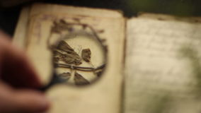 Magnifying glass and vintage book. stock video footage