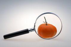 Magnifying lens Stock Images