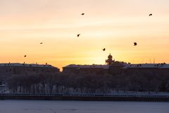 Magnitogorsk. Embankment of the Ural river at sunset. Sunset, birds and city royalty free stock photos