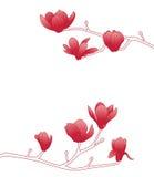 magnolia royalty ilustracja