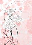 Magnolia Imágenes de archivo libres de regalías