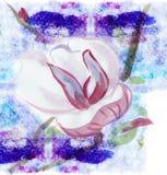 Magnolia, aguarela ilustração do vetor