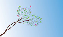 Magnolia au printemps Photos stock