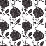 Magnolia background Royalty Free Stock Image