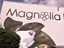 Magnolia bij de bouw stock fotografie