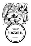 Magnolia Blommor kortet blommar hälsning bostonian blommas trees vektor illustrationer