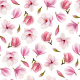 Magnolia blossoms watercolor seamless pattern. Hand drawn flower Royalty Free Stock Photography