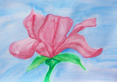 Magnolia on blue, watercolor Royalty Free Stock Photography