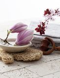 Magnolia and cherry blossoms at the spa on mineral background. Massage and beauty cure with femininity Royalty Free Stock Photos