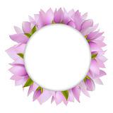 Magnolia With Circle Stock Photography