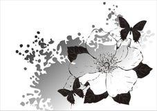 Magnolia en vlinder Royalty-vrije Stock Fotografie