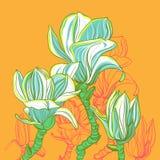 Magnolia estilizada del vector Fotografía de archivo