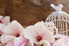 Magnolia flowers with birdcage on wooden table Royalty Free Stock Photos