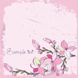 Magnolia flowers for card or invitation. Background with magnolia flowers for card or invitation Royalty Free Stock Photography