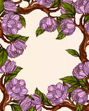 Magnolia flowers frame. Bright magnolia flowers frame template Stock Images
