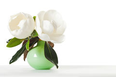 Magnolia Flowers Green Vase White Table Stock Images