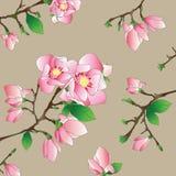 Magnolia flowers pattern. Vector illustration of magnolia flowers pattern Stock Photography