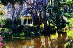 Magnolia gardens and Plantation in Charleston, SC stock images