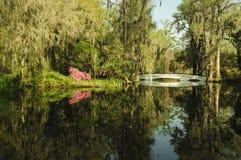 Magnolia Gardens scene with bridge in spring stock photos
