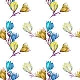 Magnolia gialla Fotografia Stock Libera da Diritti