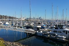 Magnolia harbor and downtown Seattle Royalty Free Stock Images