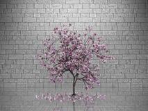 Magnolia nella sala Fotografia Stock Libera da Diritti