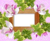 Magnolia- och fotoram Royaltyfri Fotografi