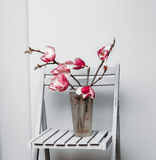 Magnolia op een stoel stock foto