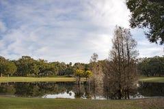 Magnolia Park at Apopka Florida stock image